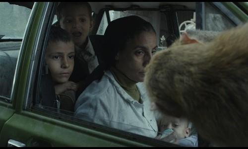 Feathers-5th El Gouna Film Festival