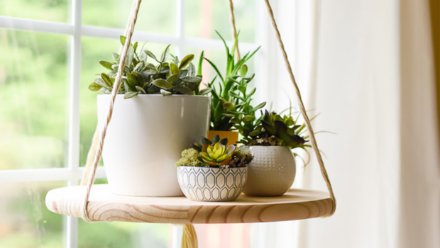 how to diy your own floating plant shelf hassle-free