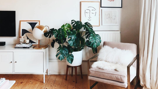 With Price Increases, Just Buy Furniture Essentials For Your New Home